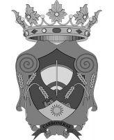 800px escudo de carboneras1