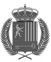 escudo de viella mitg ara n le rida 1